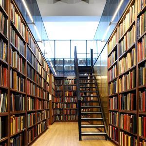 Библиотеки Селтов